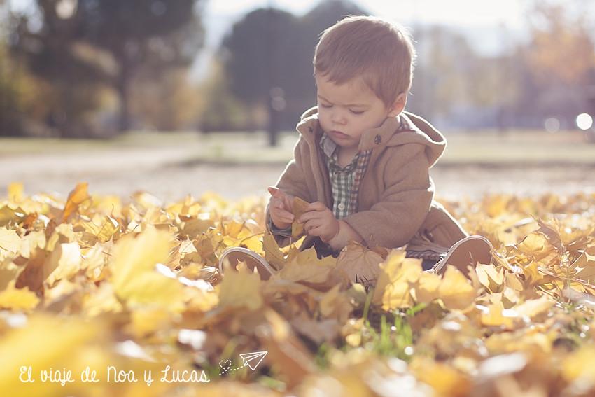 Descubriendo el otoño....