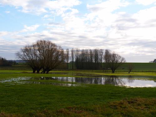 Frasnes-lez-Buissenal