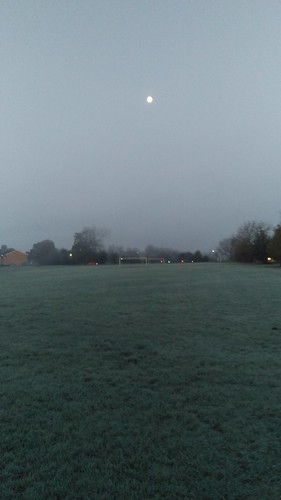 Icy Morning in Earlswood
