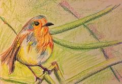 Tonight's Crayon Drawing: Bird