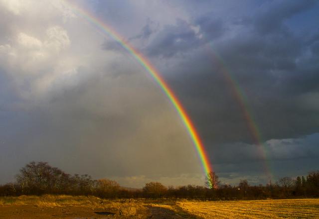 Rainbowniscing