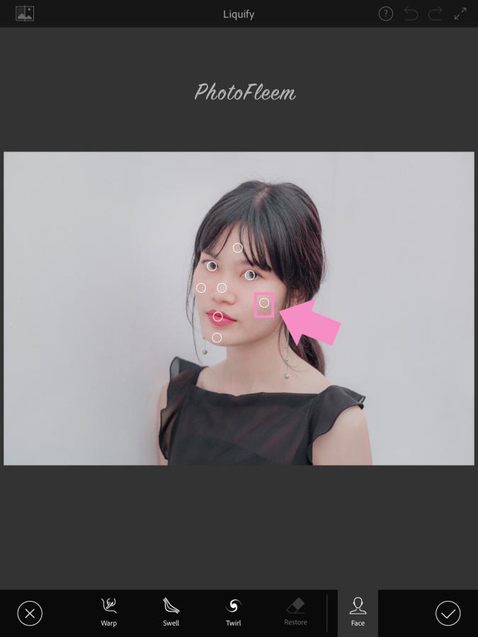 Photoshop Fix tin face
