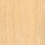 Fraxinus uhdei wood