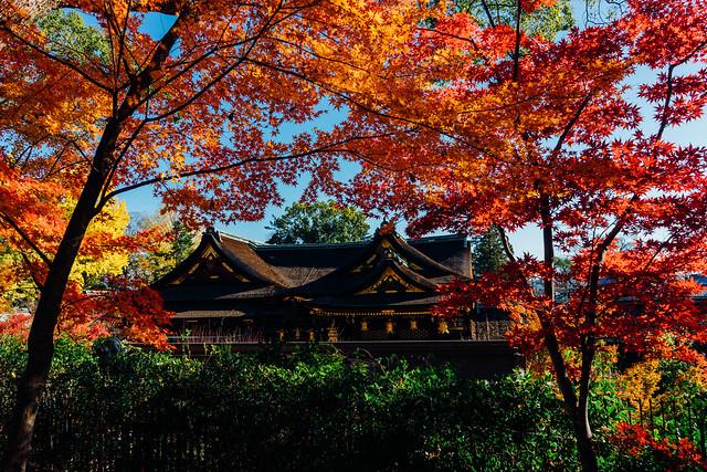 Kyoto_Kitano_05_28mm