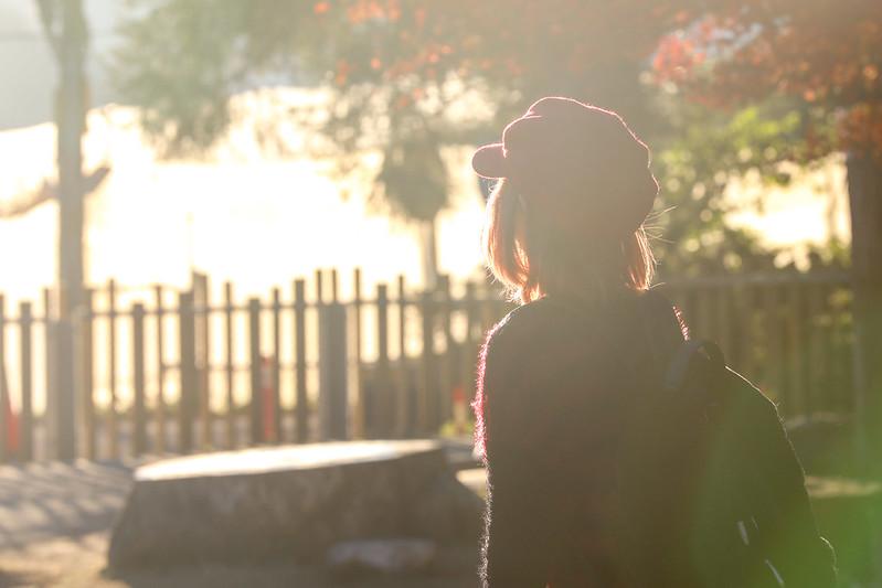 台中旅遊,台中景點,台中福壽山農場,福壽山農場,福壽山農場楓葉 @陳小可的吃喝玩樂