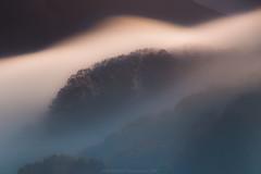 Luces de Niebla