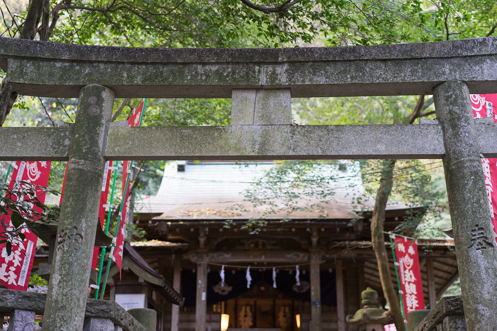 sasukeinari-jinja1