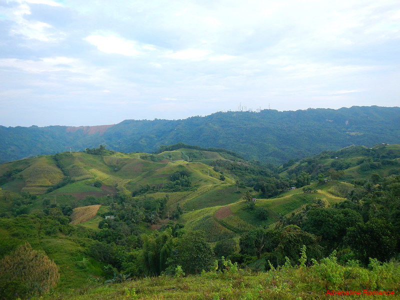 Farmlands of Central Cebu