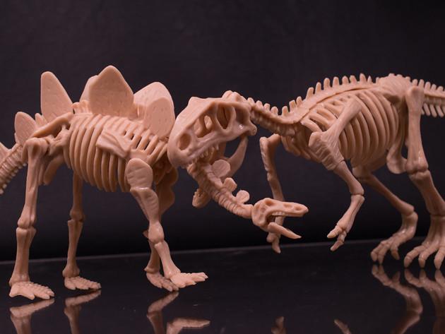レビュー 100均キャンドゥ 化石ザウルス