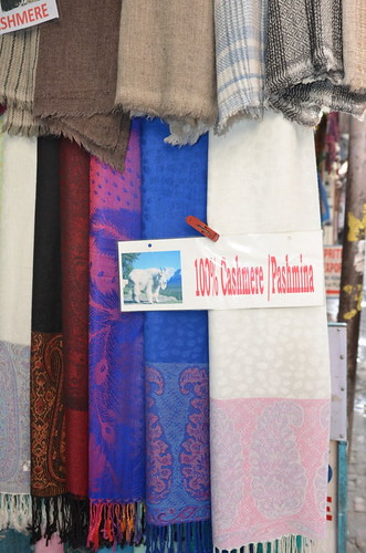 pashmina? Not with that goat. Shopping for Pashmina in Kathmandu: A Complete Guide