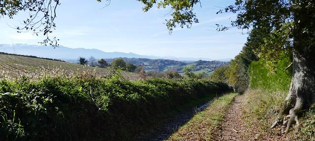 Le chemin vers l'ouest et le pic d'Anie dans le lointain, Bosdarros, Béarn, Pyrénées Atlantiques, Aquitaine, France.