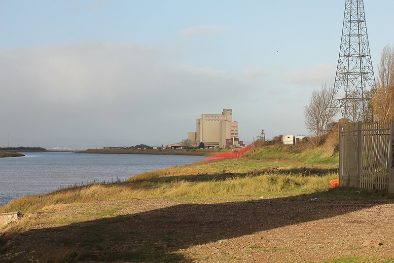 Avonmouth docks from th Lamplighters Marsh