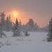 Let It Snow! Let It Snow! Let It Snow! by Fjällkantsbon