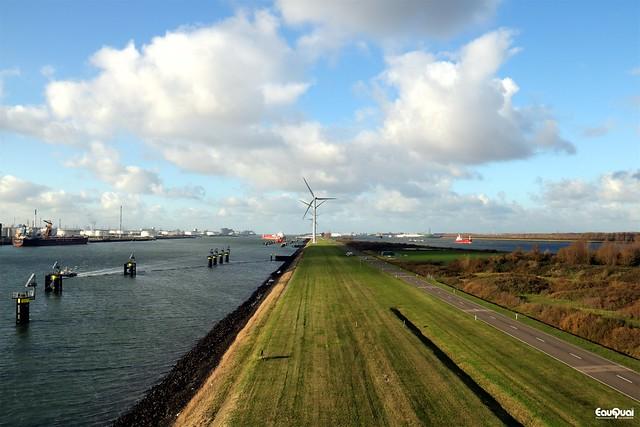 Port meets nature