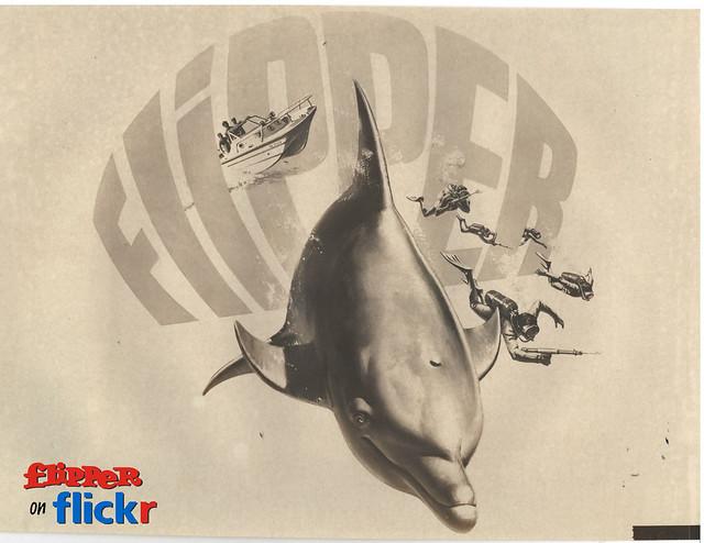 Flipper Promo Art