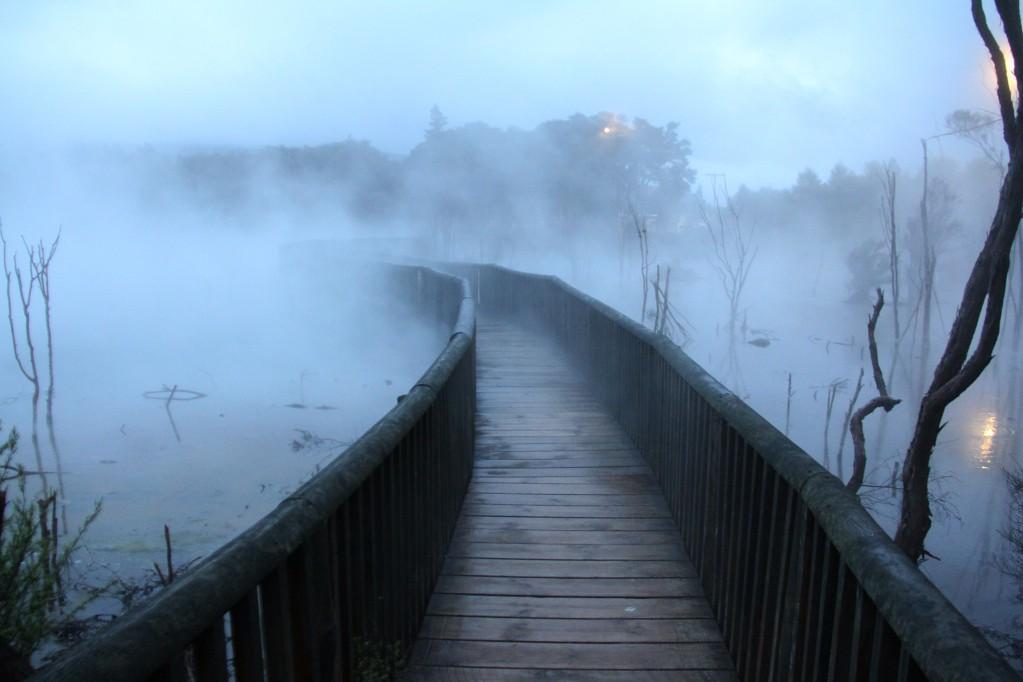 Роторуа, столица вулканов, гейзеров и озер: Куирау - парк из другого мира
