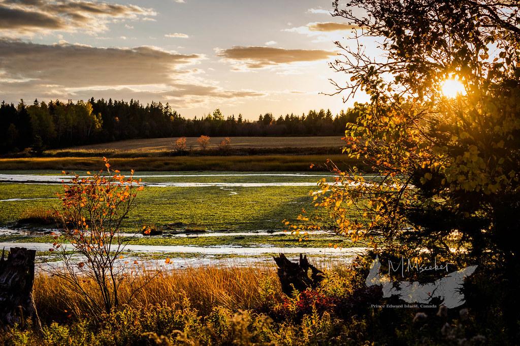 Brookfield Farm River Island