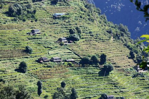 J20 : 10 octobre 2017 : 14ème jour du trek : de Chuile (2067 m) à Sinuwa (2360 m)