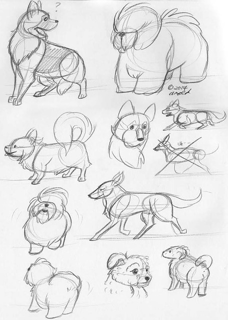 10.24.11 - National Dog Show Sketches