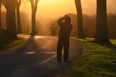 Photographing the sunset - Photo of Vieil-Hesdin