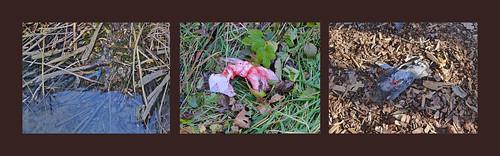 """Hitchcock """"The Birds""""? - International Day for the Elimination of Violence against Women. Walk alongside Danube Unterwegs entlang der Donau Spaziergang auf der Donauinsel an einem sonnigen Herbsttag. Vor, nach sowie anläßlich: Tag gegen Gewalt an Frauen"""