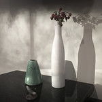 Vases+and+Shadows