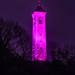 Tyndale Monument - Turn It Purple