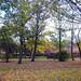 Manorway Green