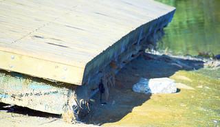 Lake Chabt 20151014