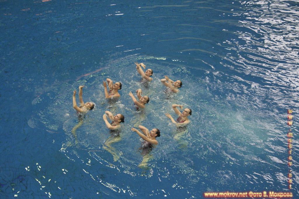 Сборная команда России по синхронному плаванию и Фотоискусство