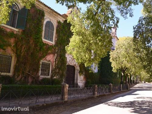Quinta da Cardiga_2