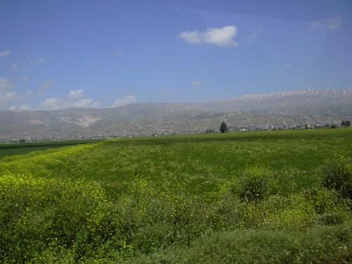 beqaavalley centrallebanon lebanon lbn