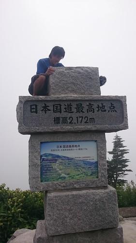 登ったはいいが降りられなくなってた