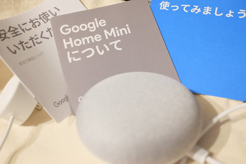 Google Home Mini 06