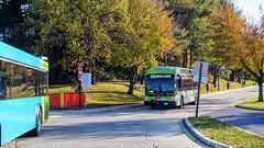 Montgomery County Transit Ride On 2017 Gillig Low Floor Advantage Diesel #44079D & Gillig Low Floor BRT Plus Diesel #44067D