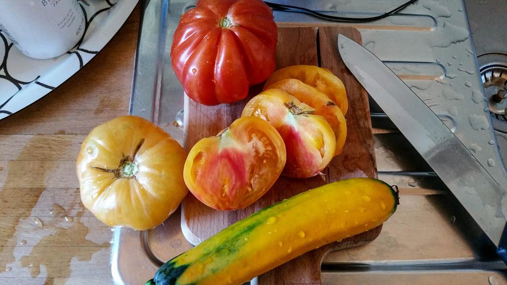 100 gratuit végétarien datant