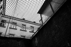Freedom - I don't want to die in a prison cell, Vilnius, Lithuania
