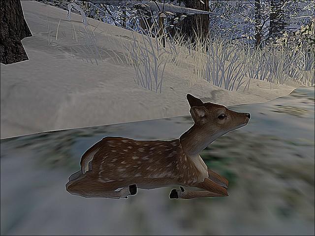 Ren Faire - Winter Wonderland - A Gentle Miracle