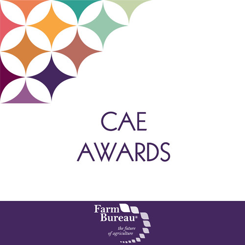 2018 CAE Awards