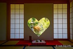 京都インスタ映えの旅 #8 正寿院