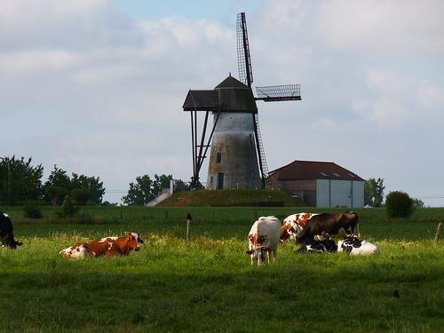 Moulin de Denderwindeke