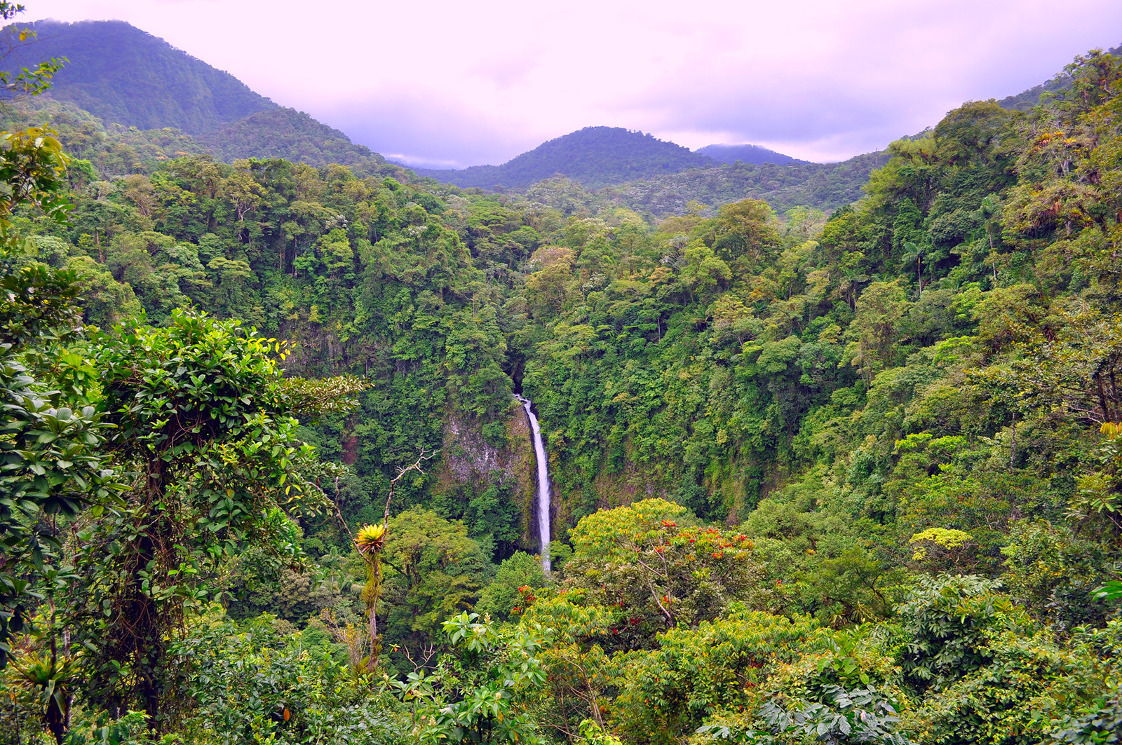 Viajar a Costa Rica / Ruta por Costa Rica en 3 semanas ruta por costa rica - 37538083104 9e87e0aa41 h - Ruta por Costa Rica en 3 semanas