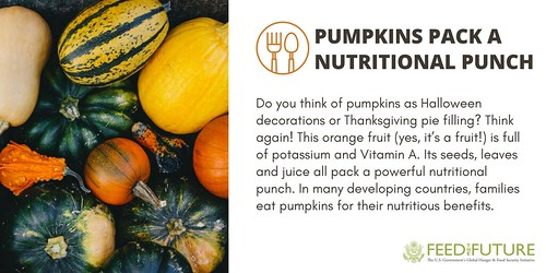 Pumpkins Pack a Nutritional Punch