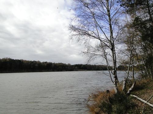 Sand pond in Groot Schietveld nature reserve