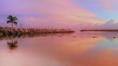 sunrise softglow cottoncandy jamaica