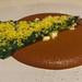 ACUYO + MOLE NEOLONÉS  Mole, fresh cheese and acuyo leaf. por Travel Musings