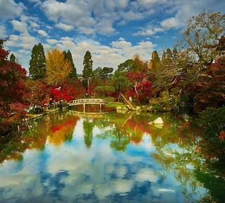 Kyoto Reflection