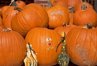 Pumpkins -- Arlington United Methodist Church Arlington Boulevard Arlington (VA) October 2016