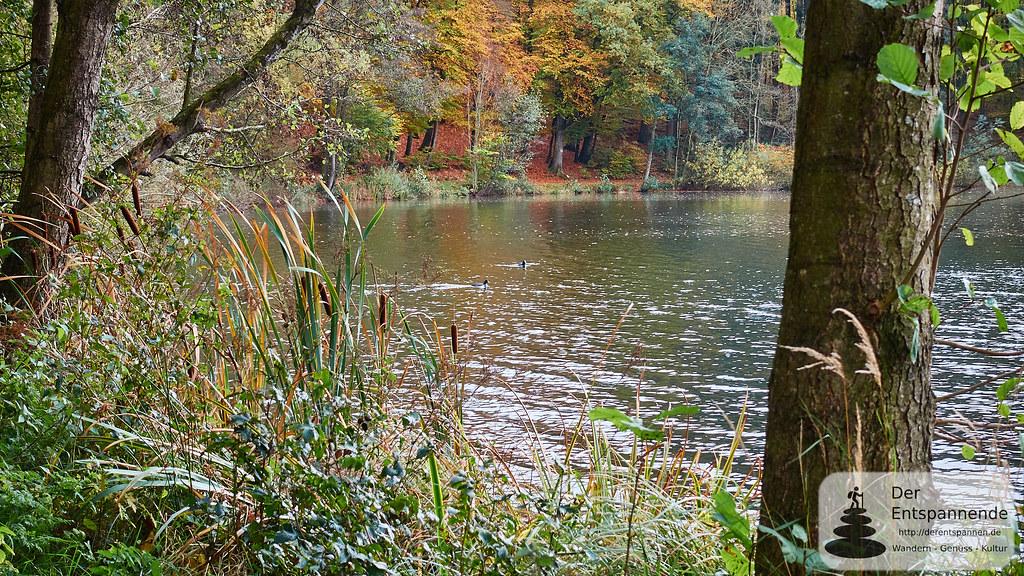 Holzmaar bei Gillenfeld