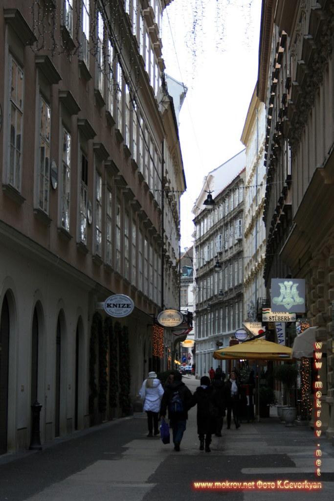 Вена, столица Австрии фотографии